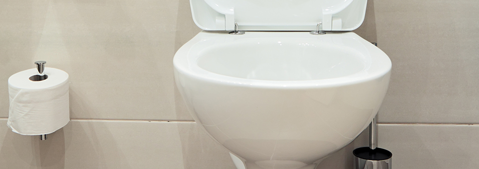 Amazing Stop Toilet Ring Today With 4 In 1 Toilet Care Soft Scrub Ibusinesslaw Wood Chair Design Ideas Ibusinesslaworg