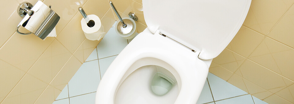 Excellent Use Soft Scrub 4 In 1 Toilet Care To Stop Toilet Ring Soft Ibusinesslaw Wood Chair Design Ideas Ibusinesslaworg